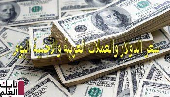 سعر الدولار مقابل الجنيه المصري اليوم الأربعاء الموافق 4 ديسمبر 2019