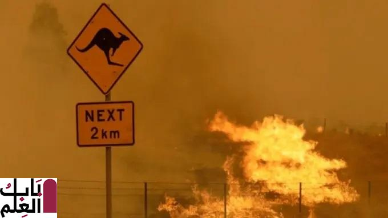 Photo of الأمطار تهطل بغزارة لتخمد الحرائق في أستراليا
