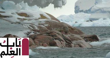 ذوبان الأنهار الجليدية فى أنتاركتيكا يكشف عن جزيرة مخفية 2020