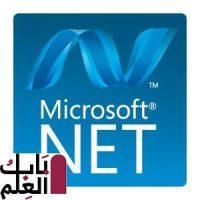 برنامج Microsoft NET Framework