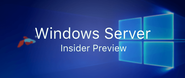 إصدار Windows Server Insider
